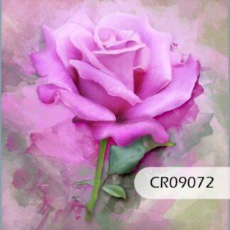 09 Flores